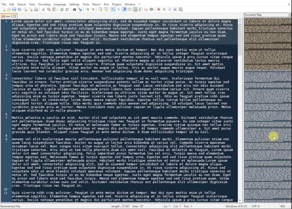 Notepad++ Document Minimap